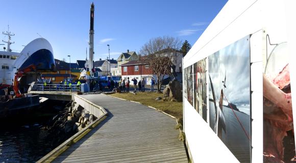 200 000 til engasjement og bolyst i Lofoten. Se alle som fikk støtte fra Lofotkraftfondet.